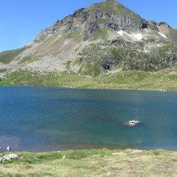 Les étangs de Fontargentes